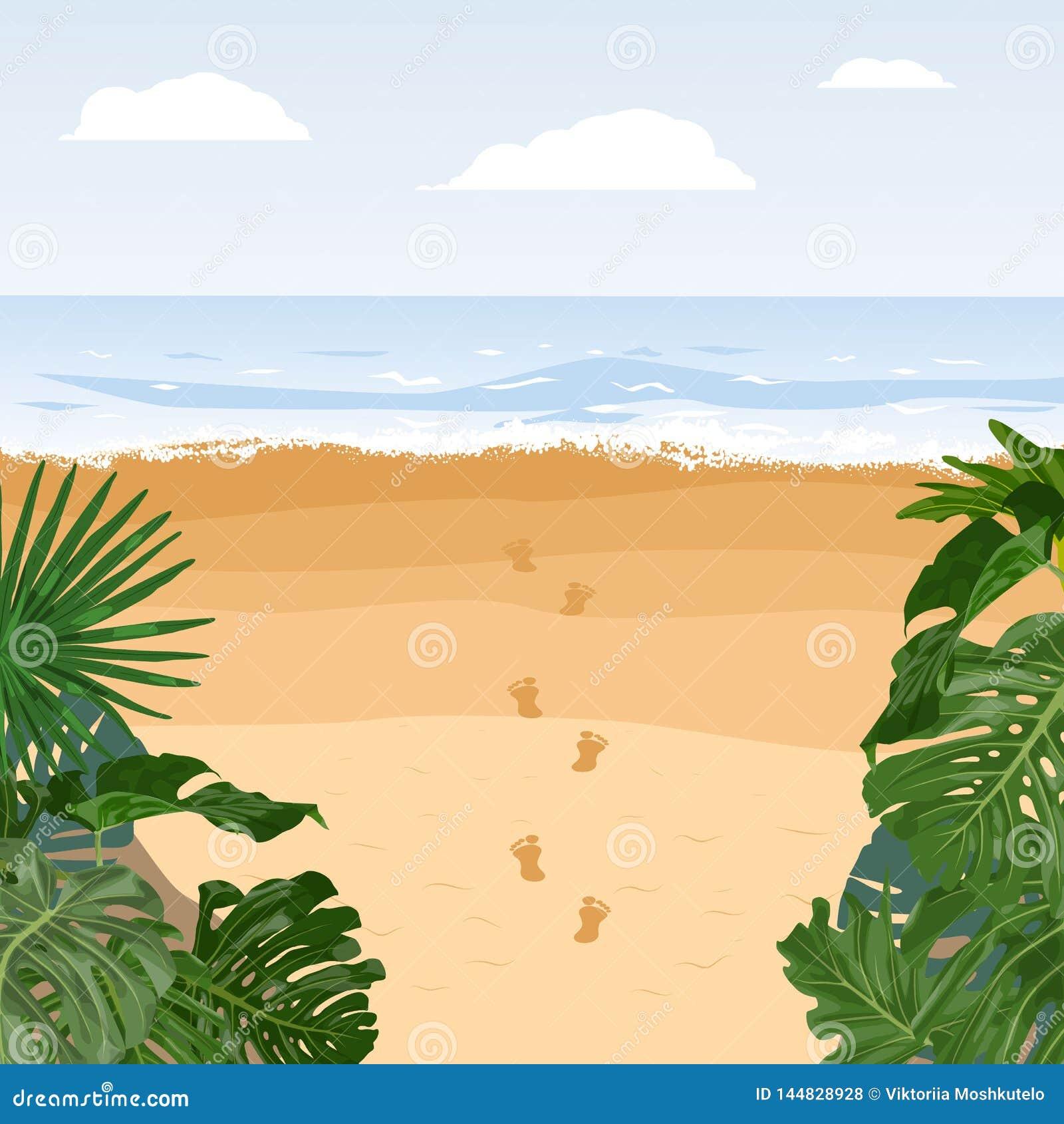 Curso calmo da ilha, f?rias de ver?o Pegada da areia da praia