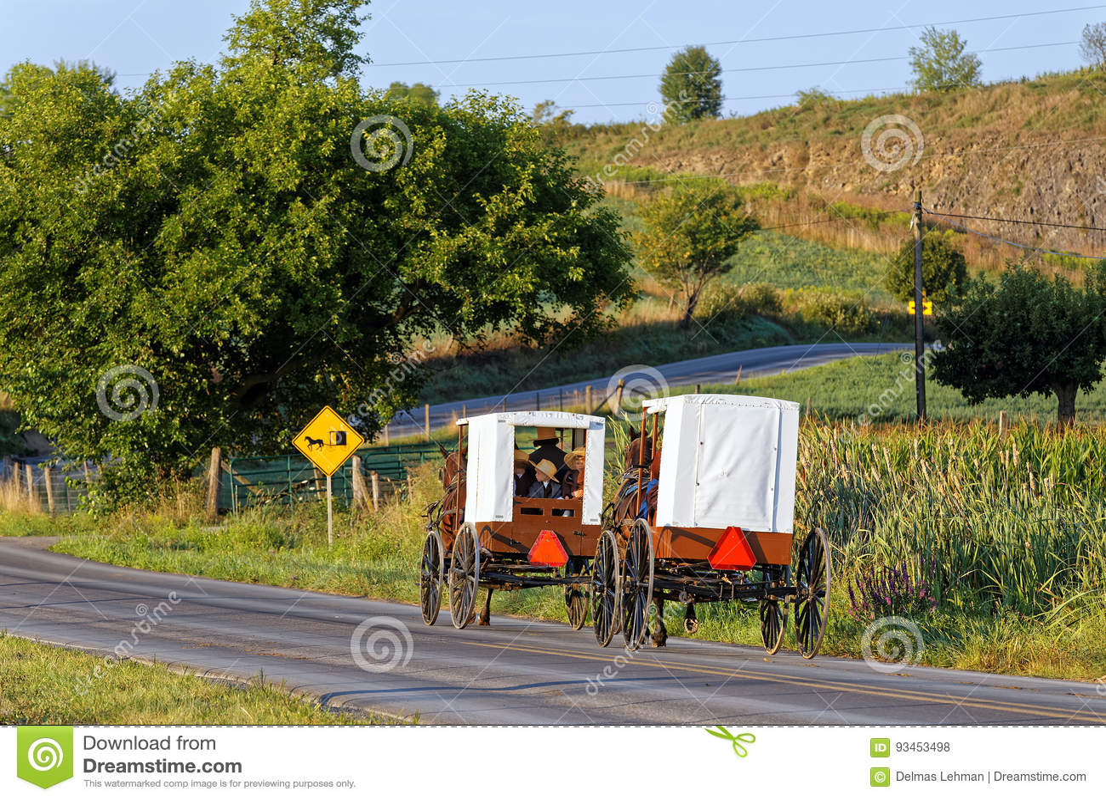 Curso das famílias de Amish com cavalo e transporte