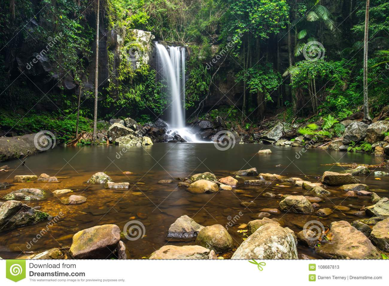 Curtis Falls In Mount Tamborine National Park On The Gold Coast