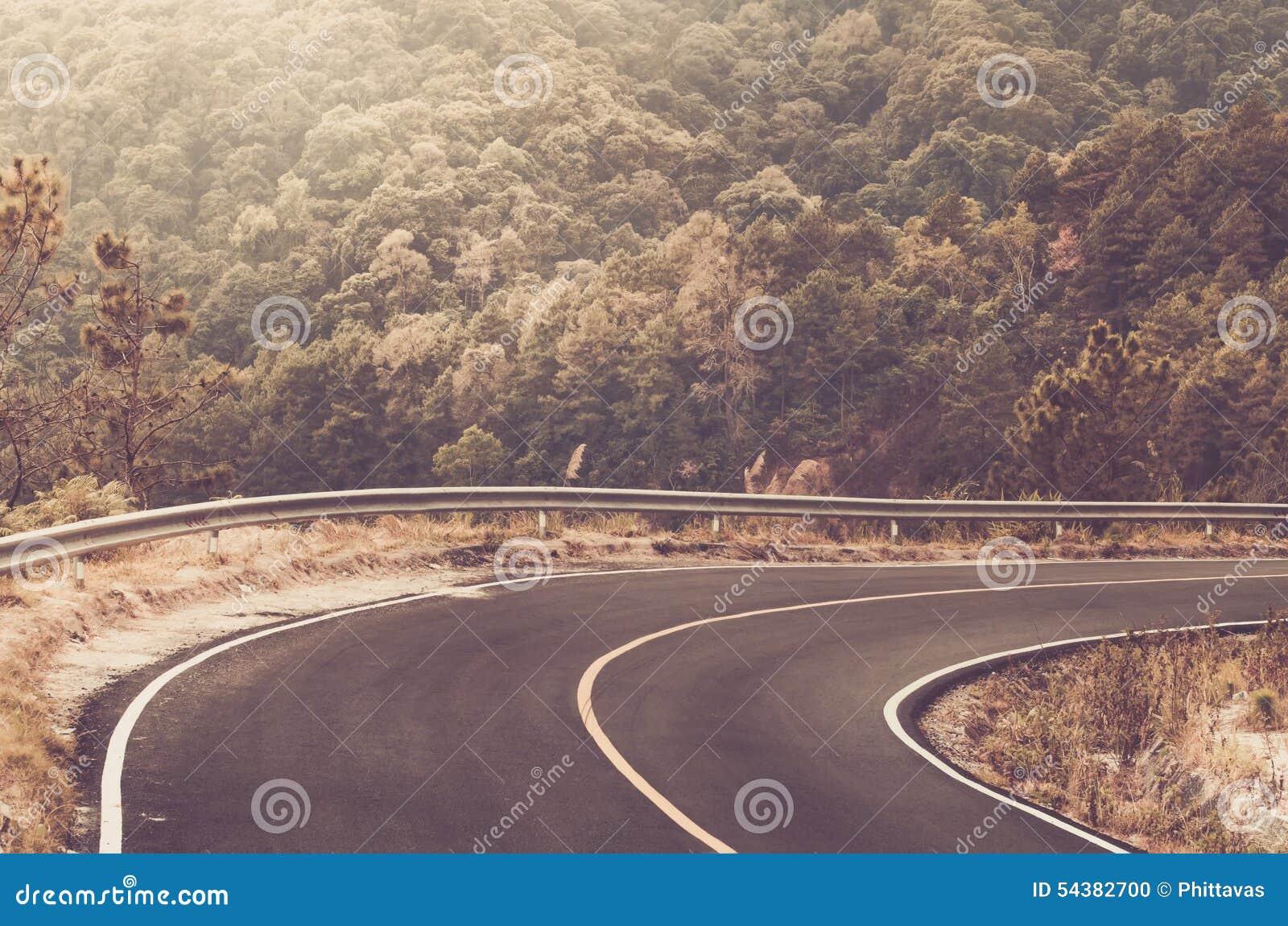 Curva afiada bonita da estrada local na floresta grande