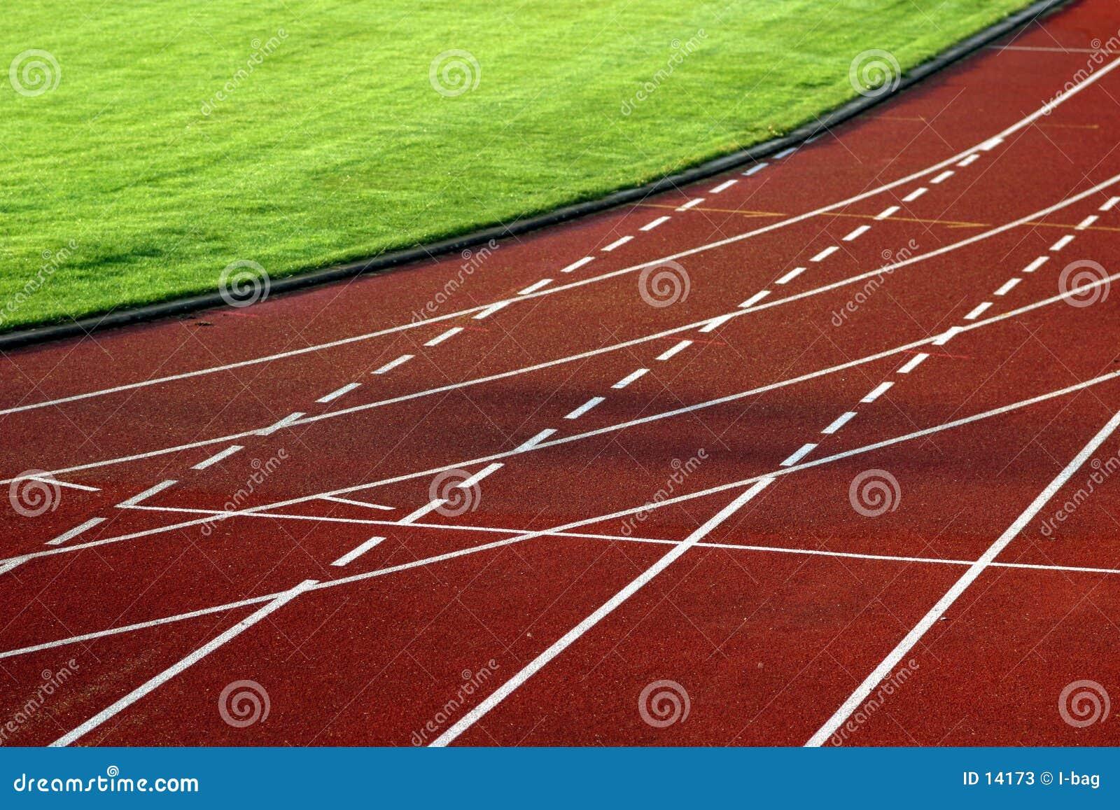 Curva da trilha de raça