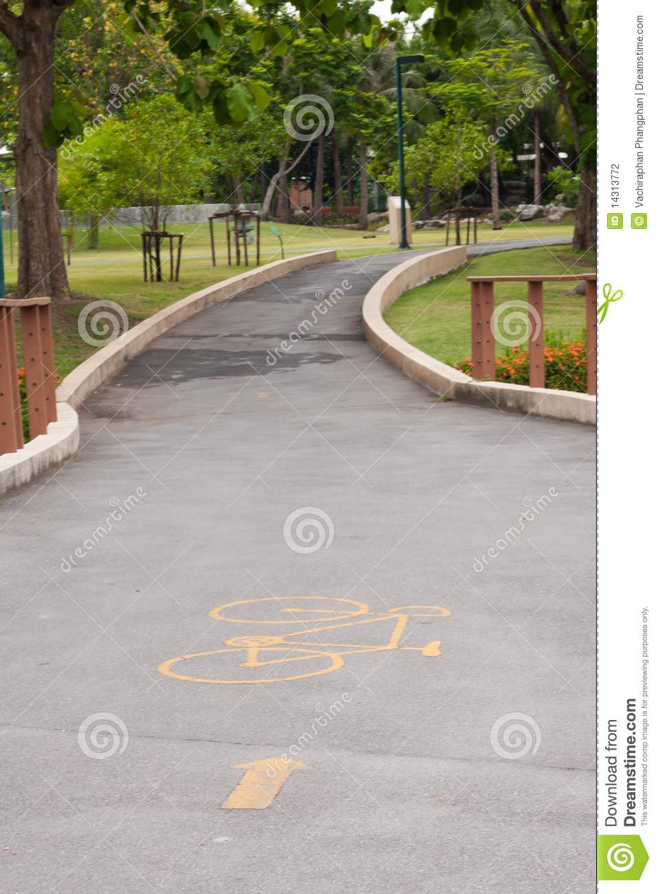 Download Curve sidewalk in the park stock photo. Image of curve - 14313772
