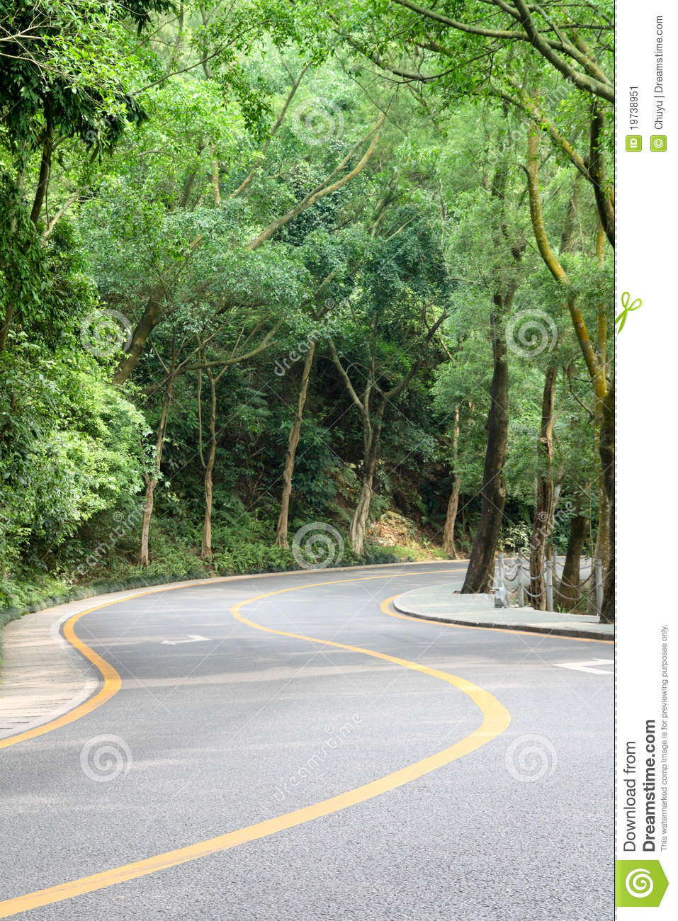 curved road with trees on both sides stock photo colourbox curved road with trees stock image image 19738951