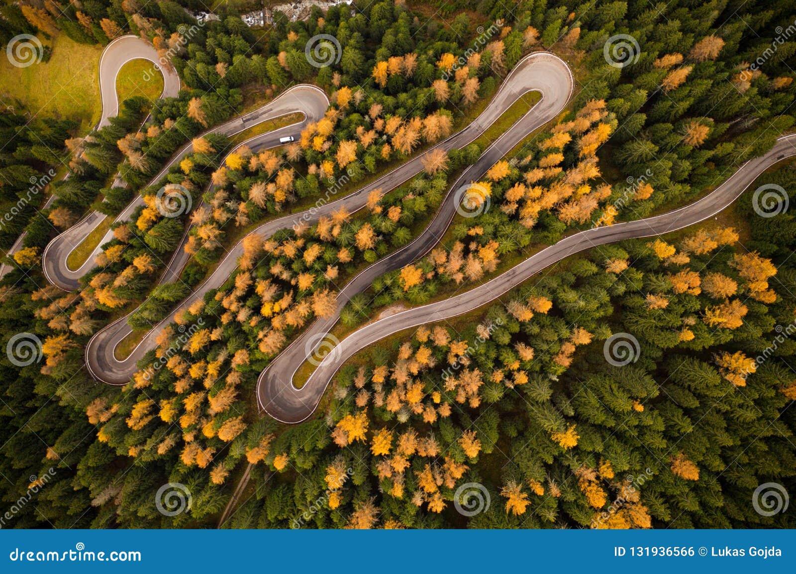 Curvy дорога в лесе atumn