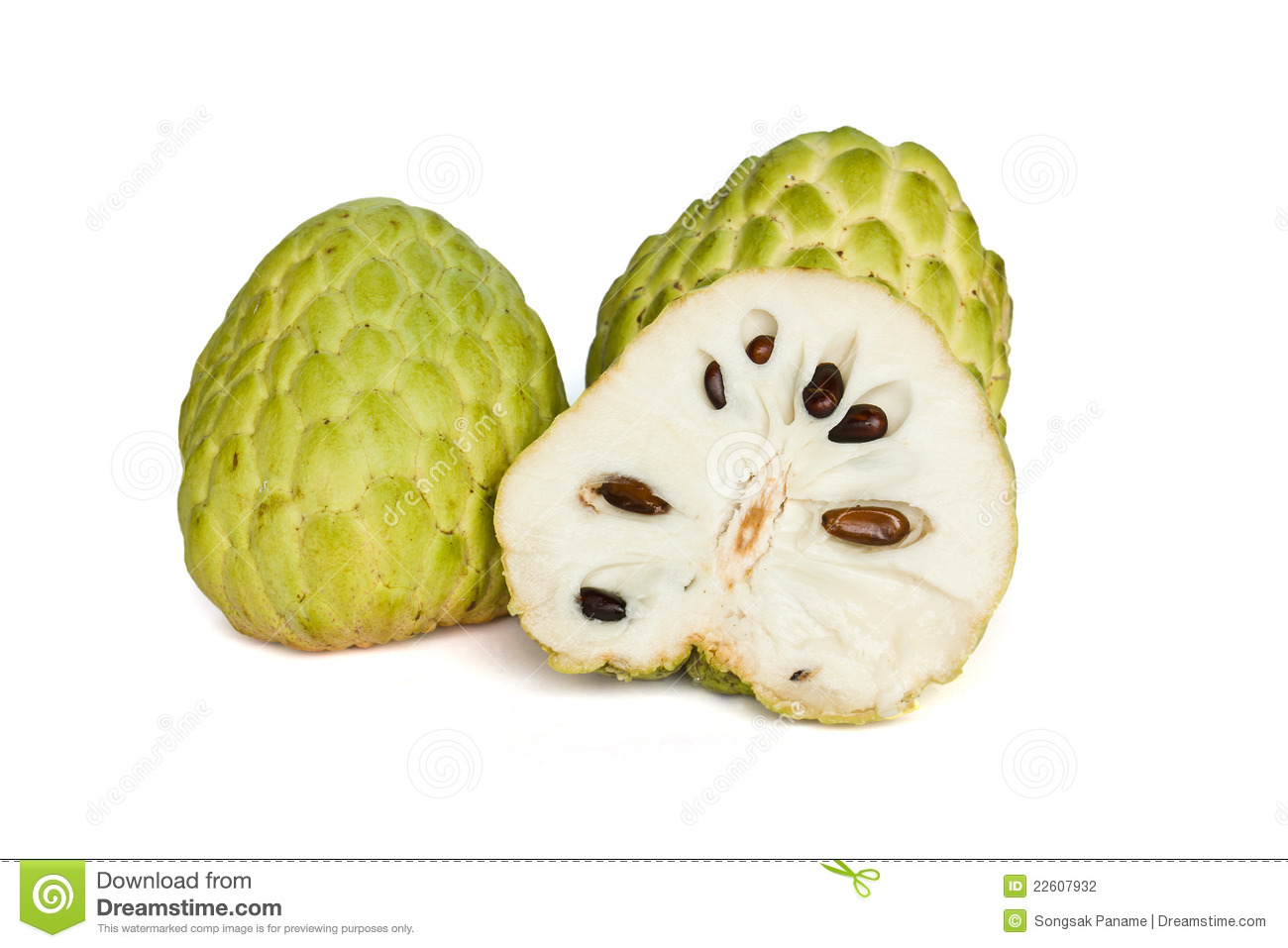 pics for  gt  custard apple clipart helping others clip art free helping others clipart black and white