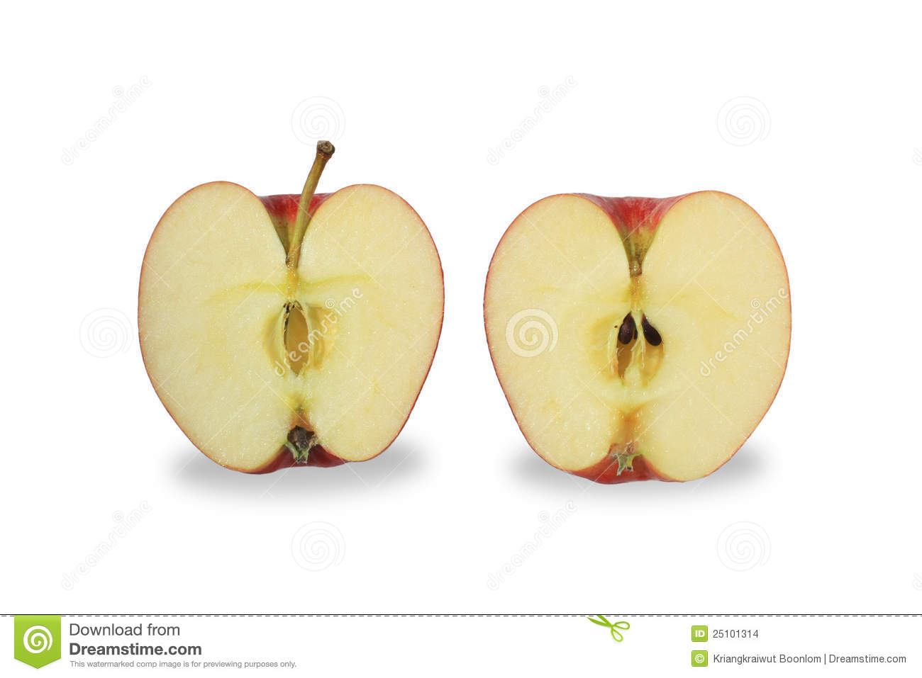 cut apple isolate on white background stock images image clip art maple leaf clipart map of england