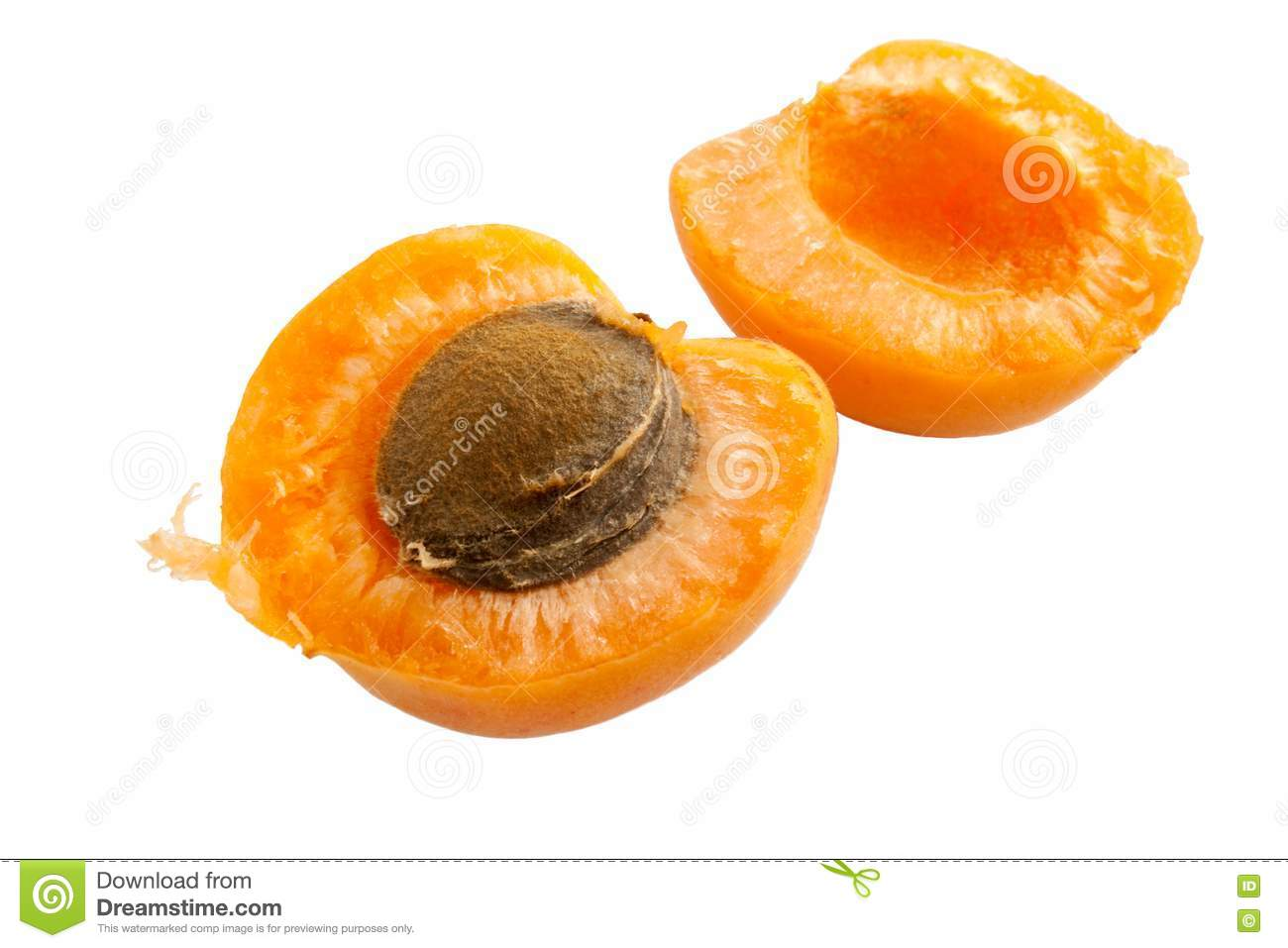 Apricot cut into half with seed inside isolated ovet white