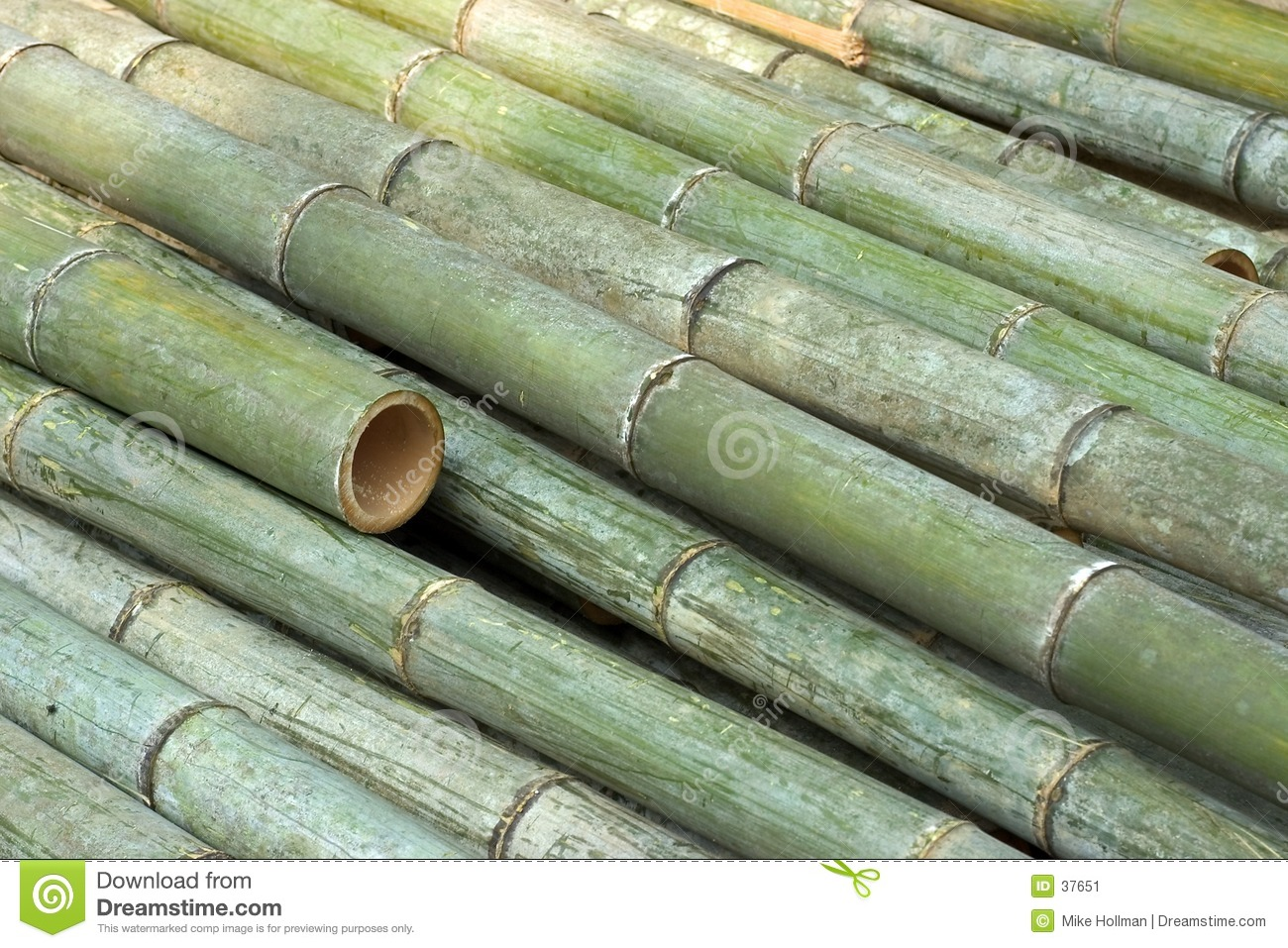 The Tale of the Bamboo Cutter - Wikipedia