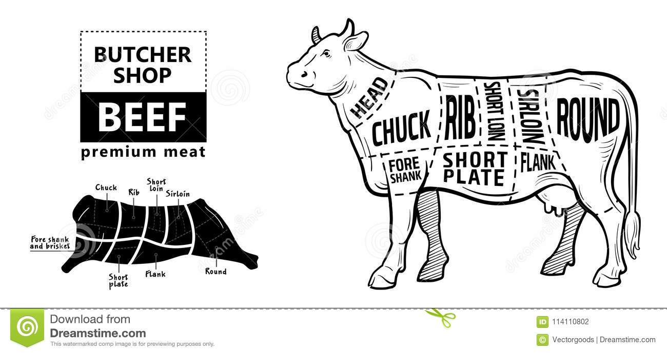 cut of beef set  poster butcher diagram