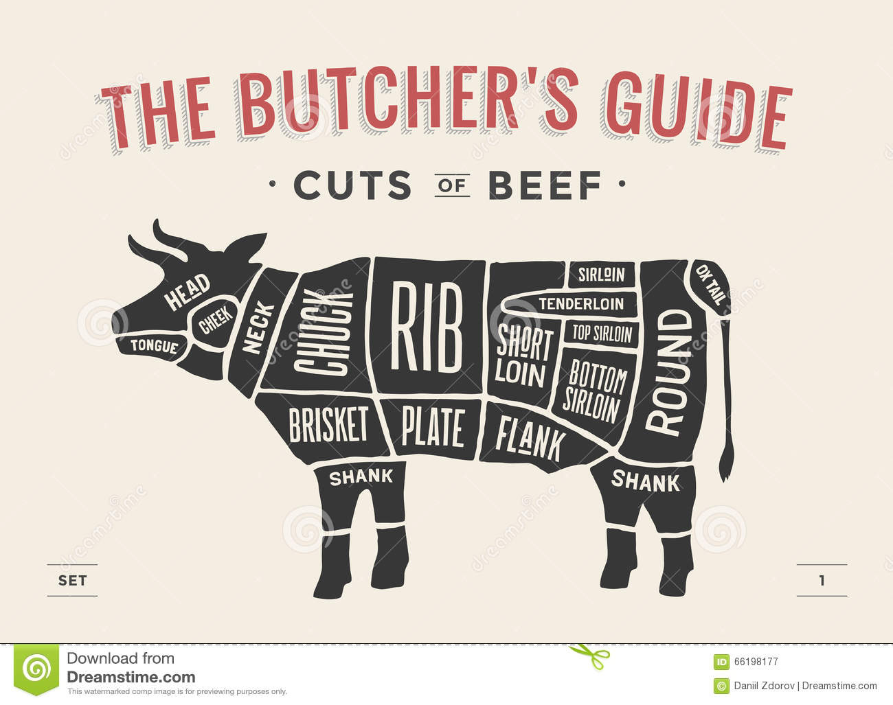 Download Cut Of Beef Set. Poster Butcher Diagram And Scheme - Cow. Vintage Typographic Hand-drawn. Vector Illustration. Stock Vector - Illustration of industry, menu: 66198177