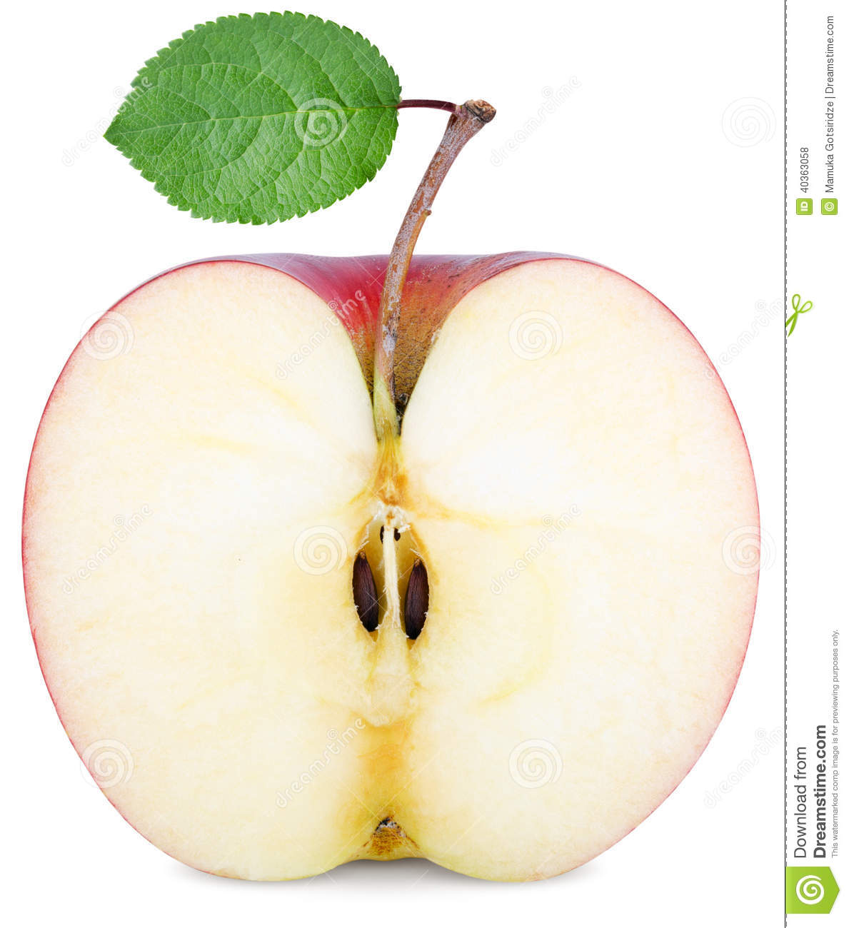 cut half an apple stock photo image 40363058