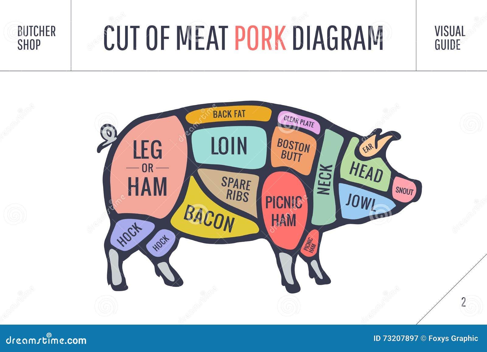 cut of meat set poster butcher diagram scheme and guide pork rh dreamstime com Pork Cuts Chart Pork Cuts Chart