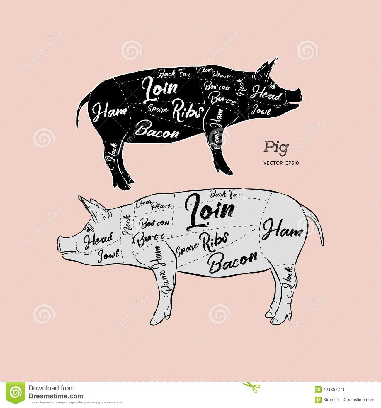 Pork Diagram | Scheme And Guide Pork Vintage Typographic Hand Drawn Vector