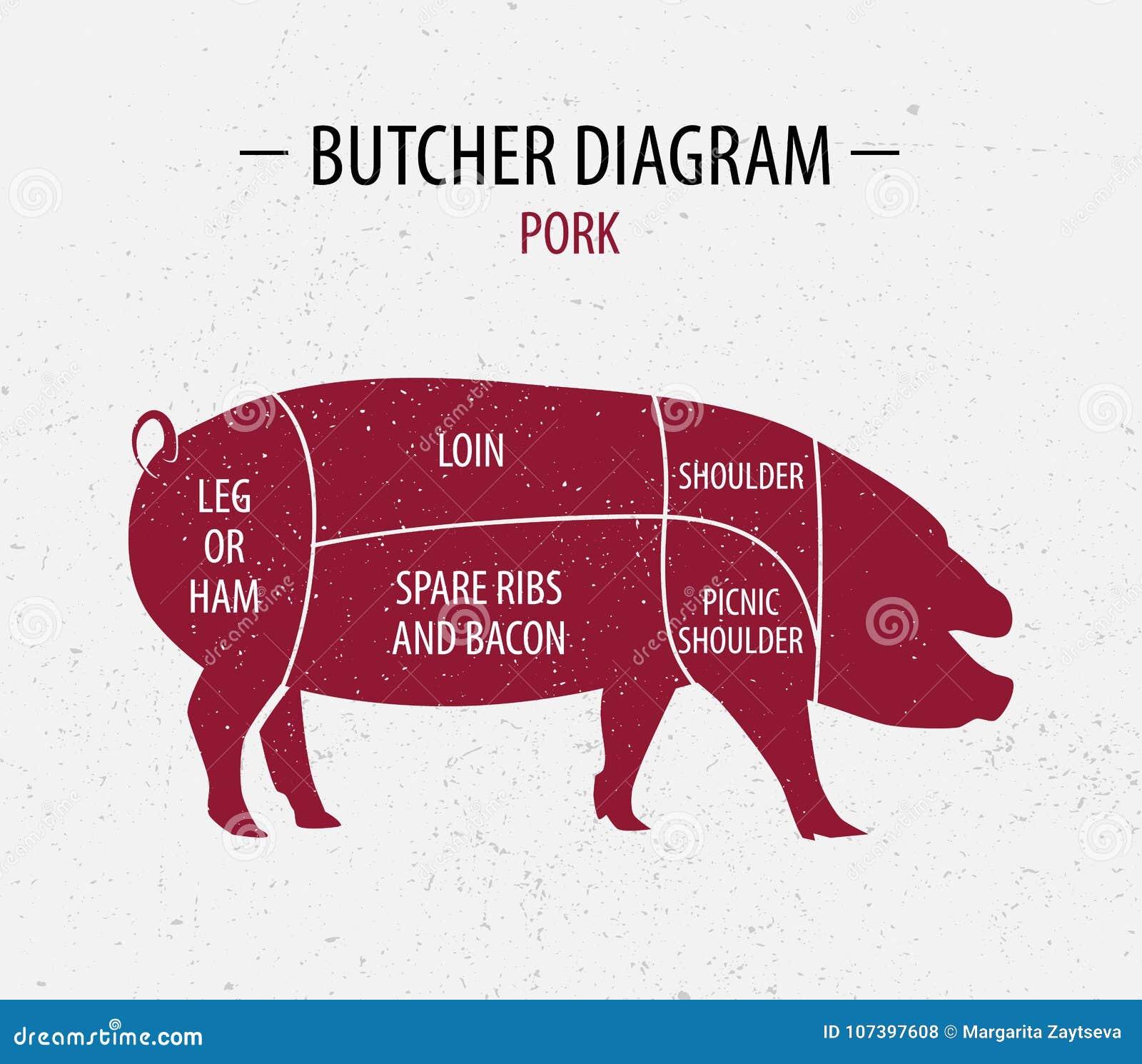 Pork Shoulder Blade And Spices Vector Illustration