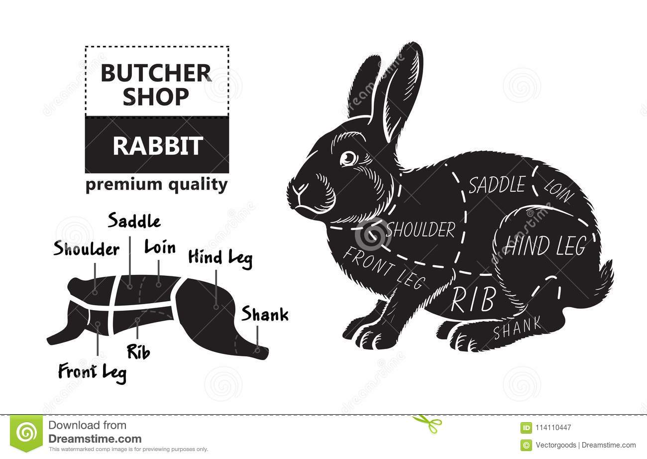 cut rabbit poster butcher diagram groceries meat stores shop farmer market silhouette vector related theme illustration 114110447 cut of rabbit poster butcher diagram for groceries, meat stores