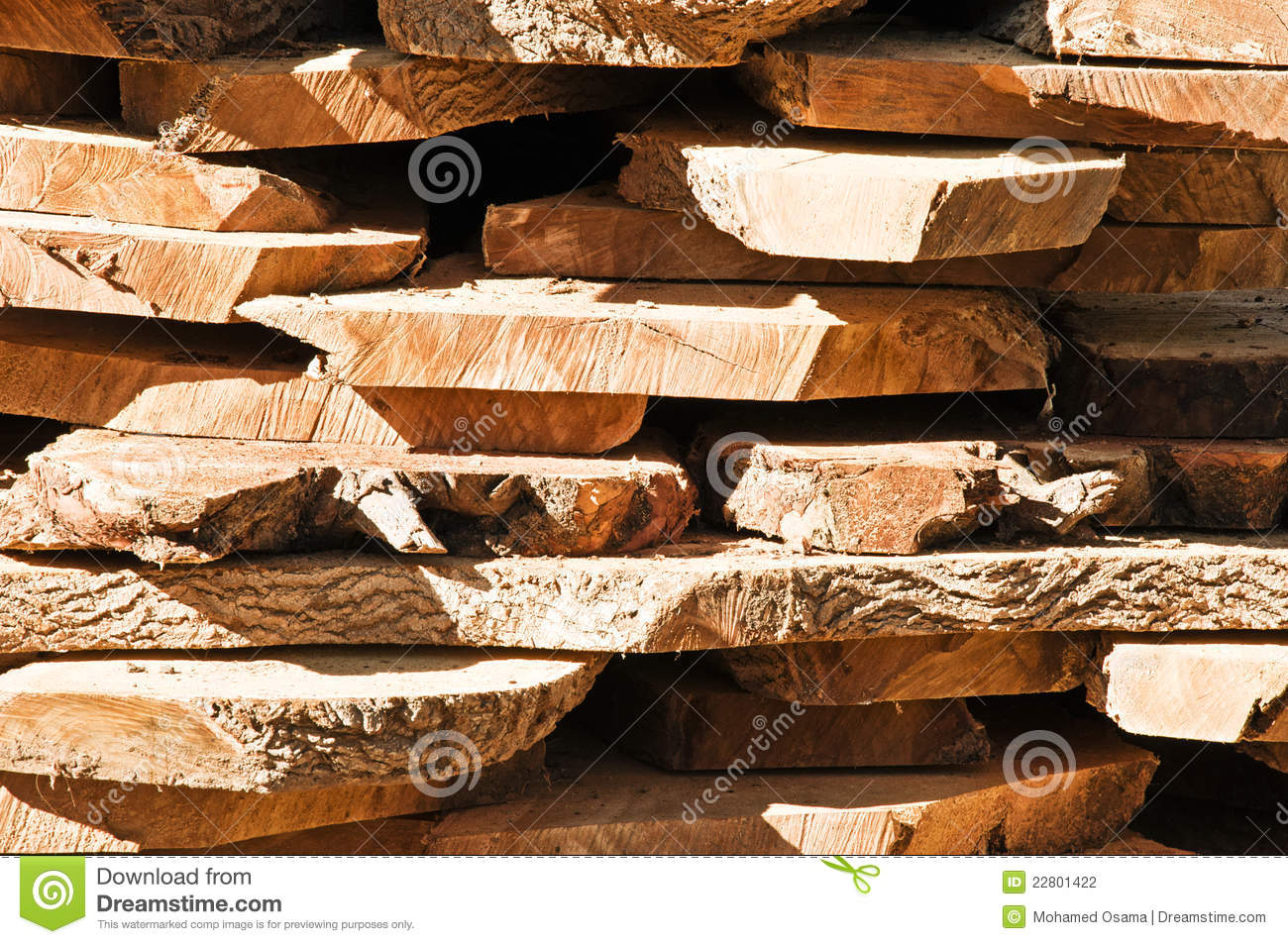 Cut raw timber wood logs stock photography image