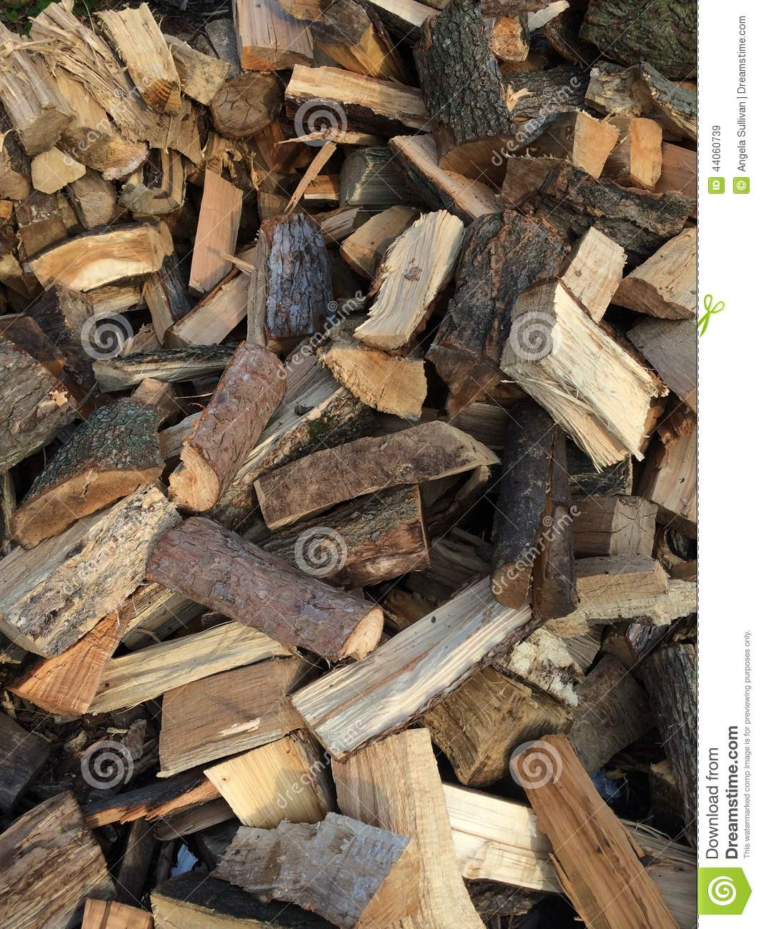 Cut Wood Logs ~ Cut and split pieces of firewood logs from a tree stock