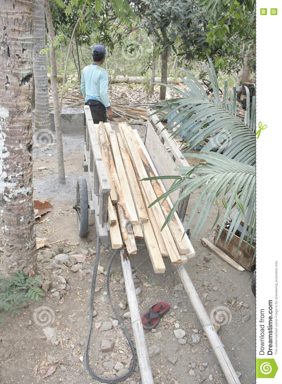 Teak Wood Pieces ~ Cut teakwood village editorial stock image of