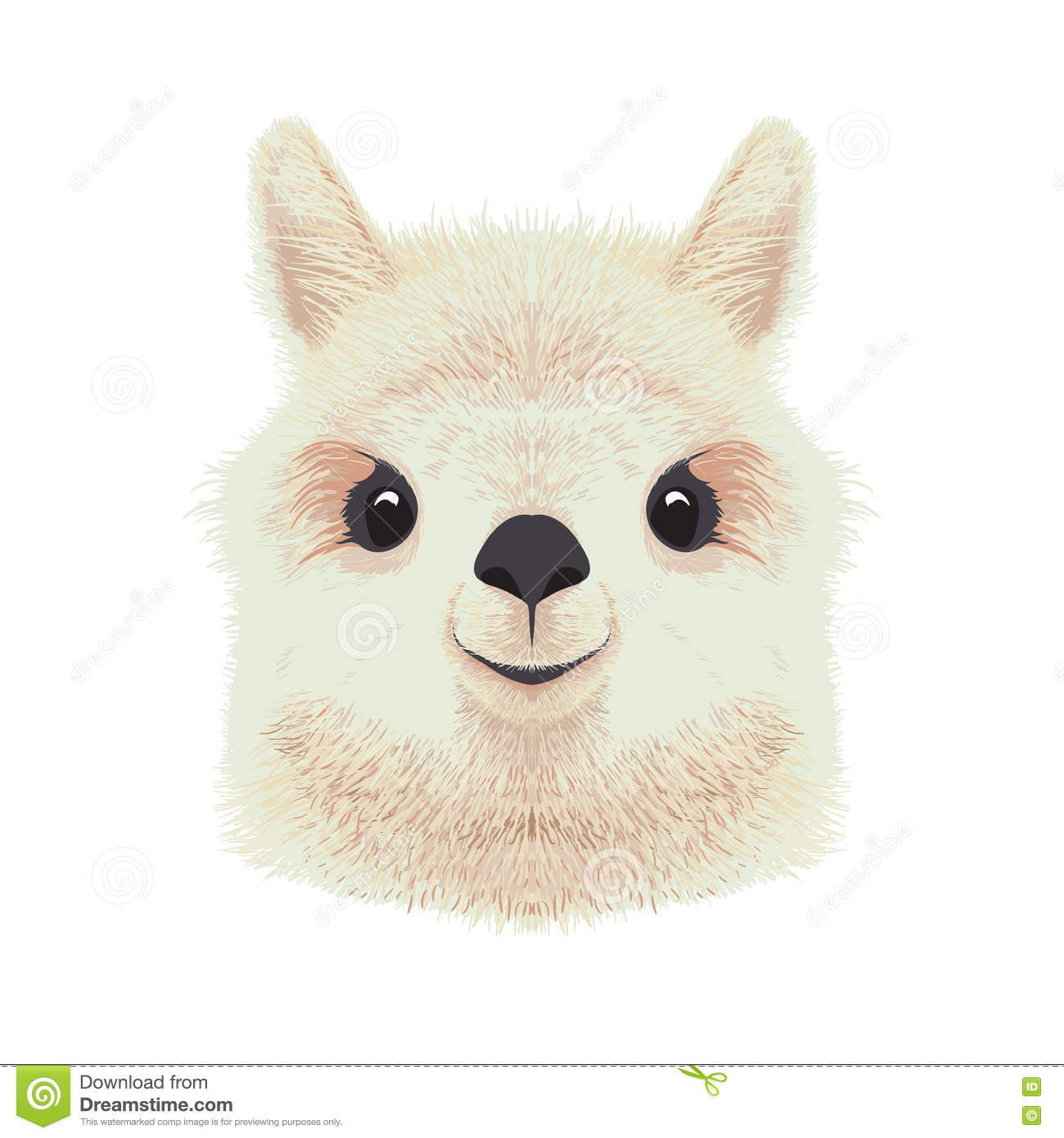 Stock Illustration Cute Alpaca Illustration Vector Drawing Image737075...