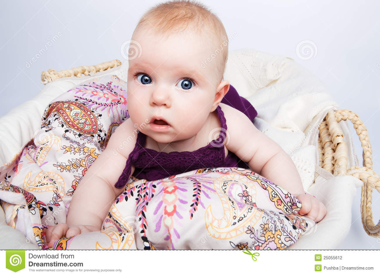 cute babe looks surprised stock photo. image of blanket - 25055612
