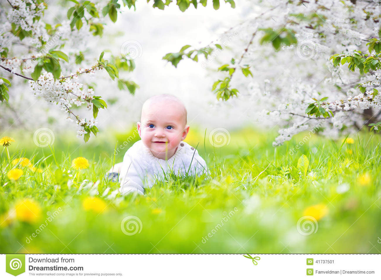Cute Baby In A Blooming Spring Apple Garden Stock Photo