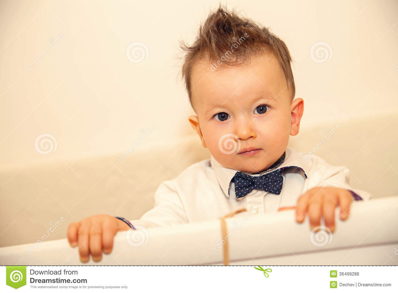 Cute Baby Boy With Bow Tie Stock Photo Image 36499288