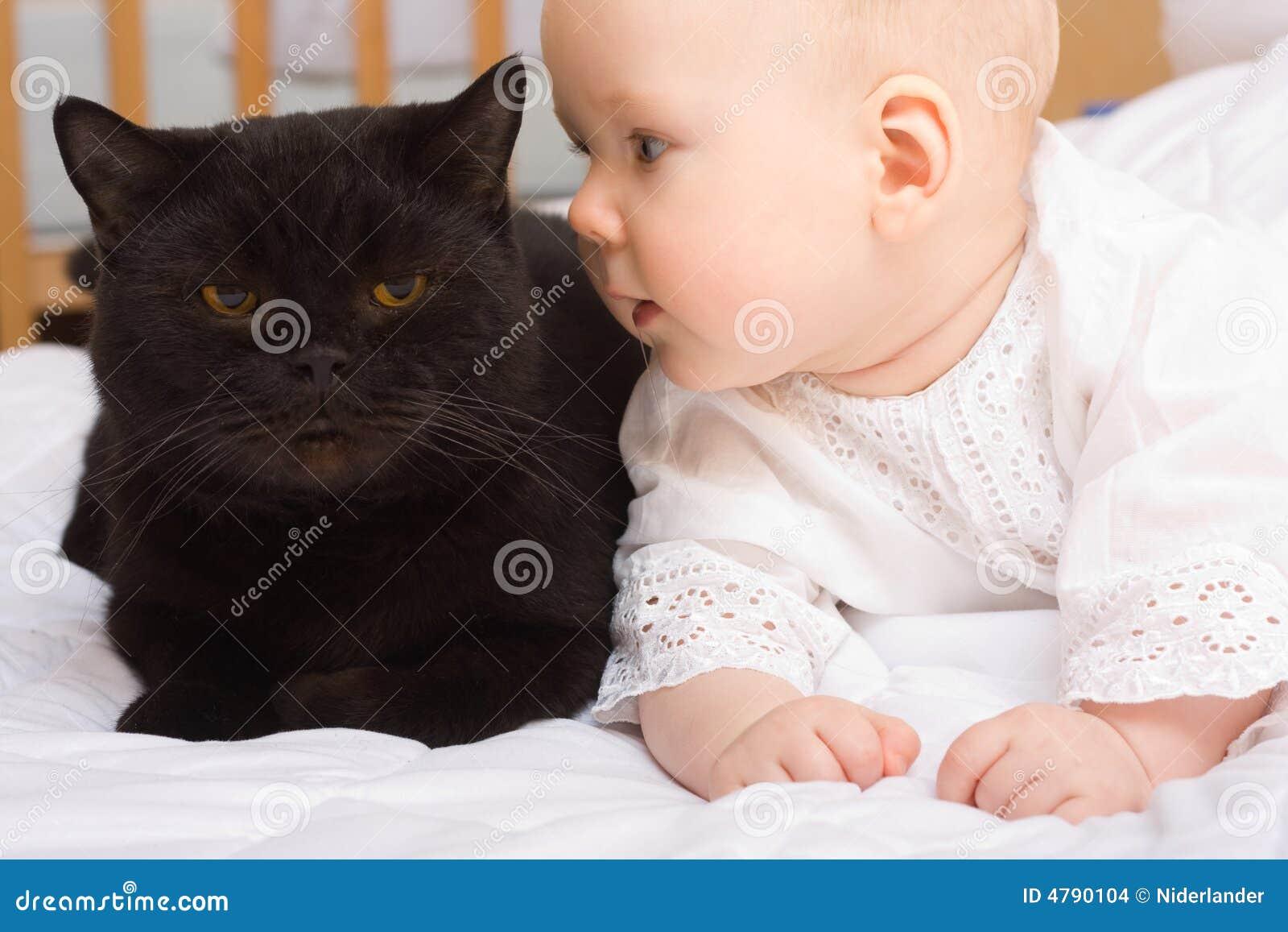 Маленький ребенок с кошкой фото