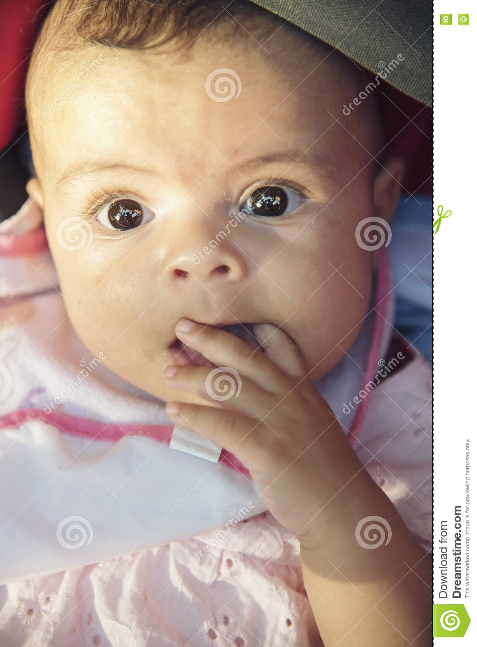 Cute Baby Girl Stock Photo Image Of Beauty Little Funny 75931136