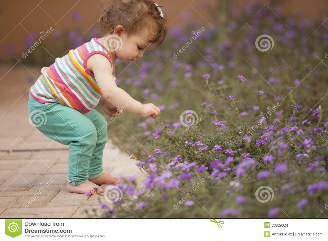 cute baby girl picking flowers stock photo - image of park, pretty