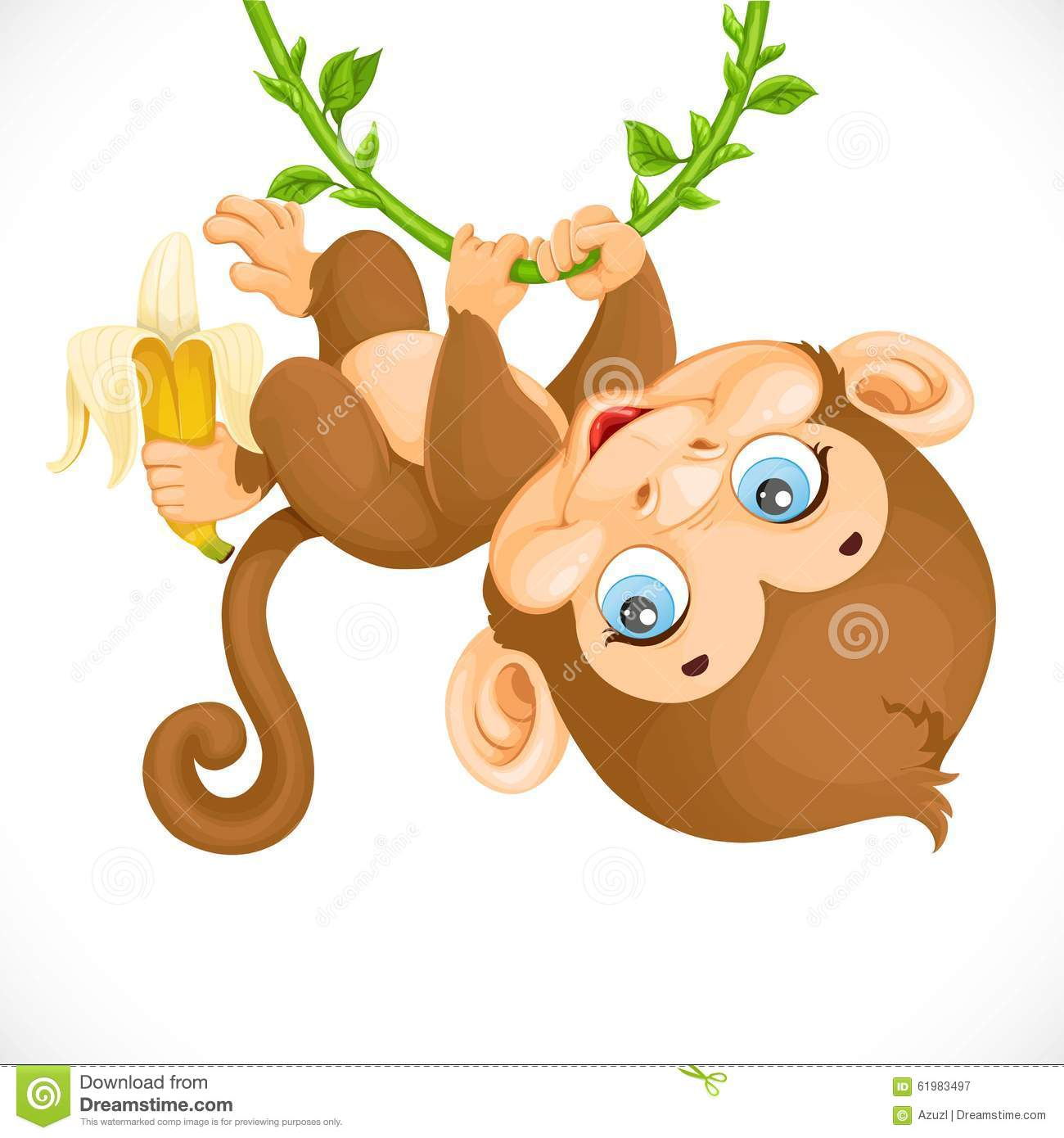 Cute Baby Monkey With Banana Hanging On The Vine Stock