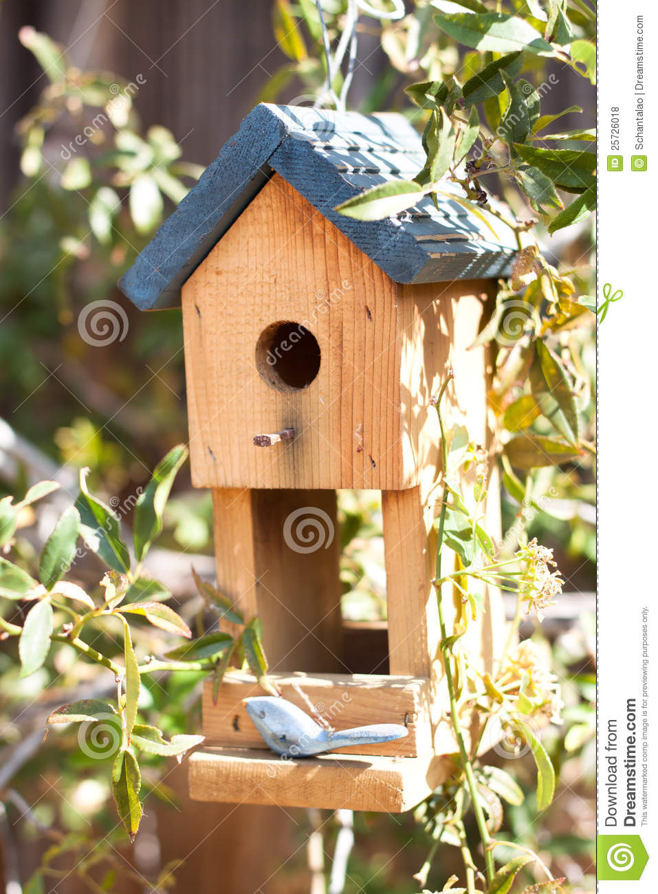 Cute Bird House In Garden Stock Photo Image Of Birdhouse