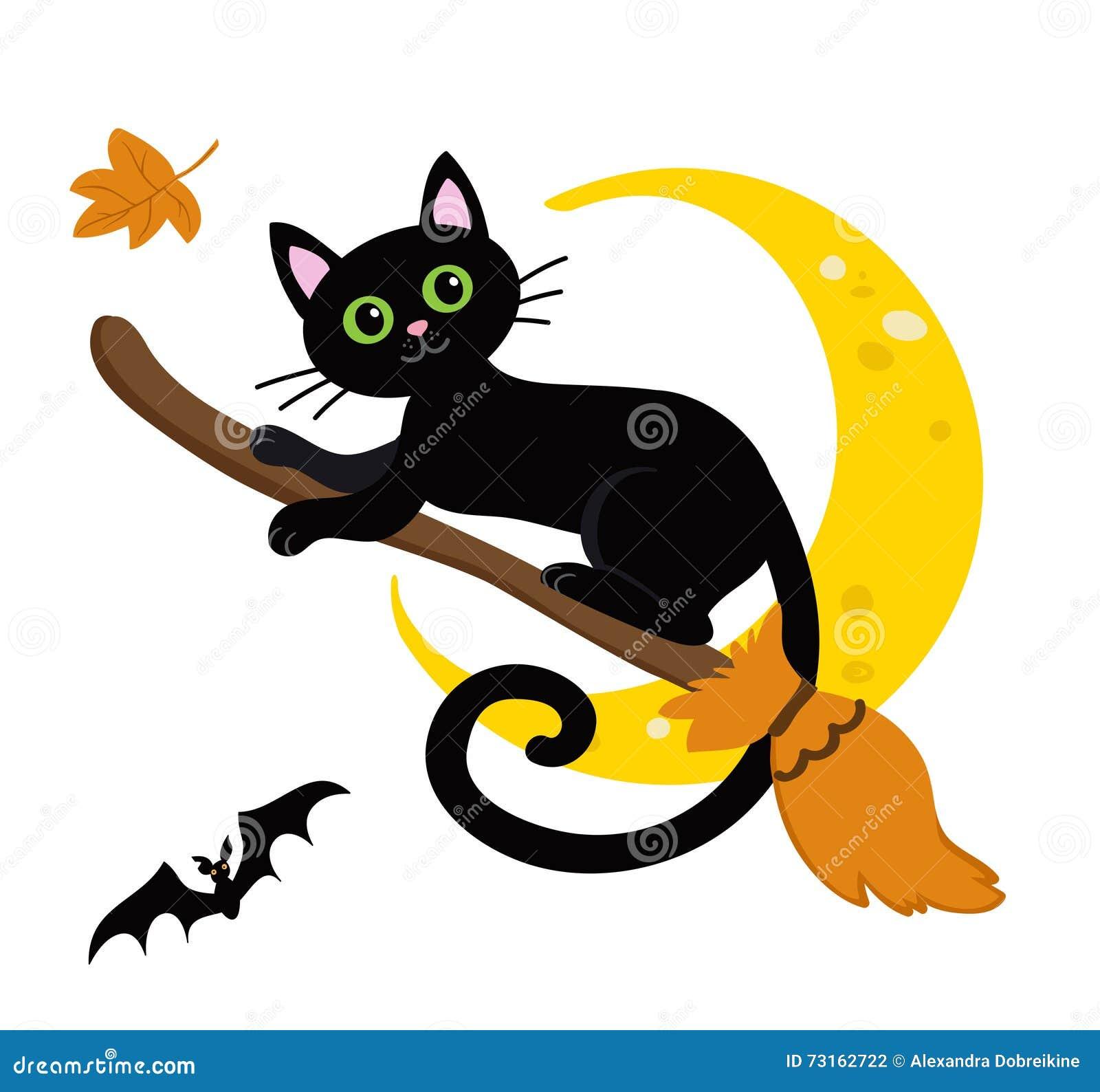 Funny Black Cat Halloween