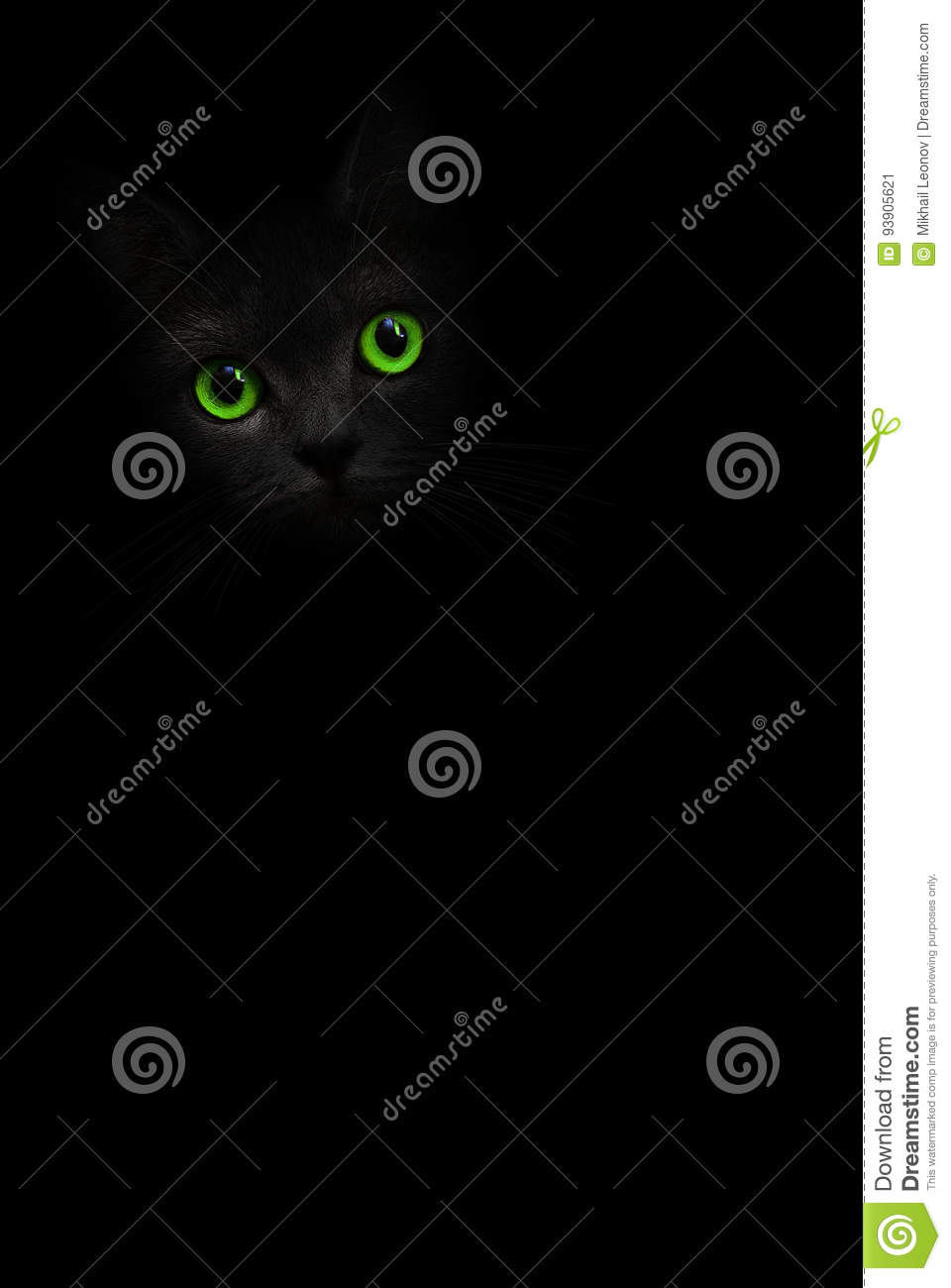 Cute black cat with green eyes is looking out of the shadow on background. Cat pussycat. Green eyes cat. Art shadow kitty. Cat in