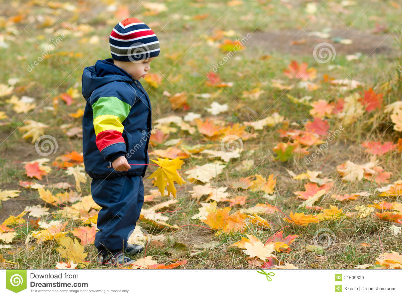 Cute boy and falling leaves