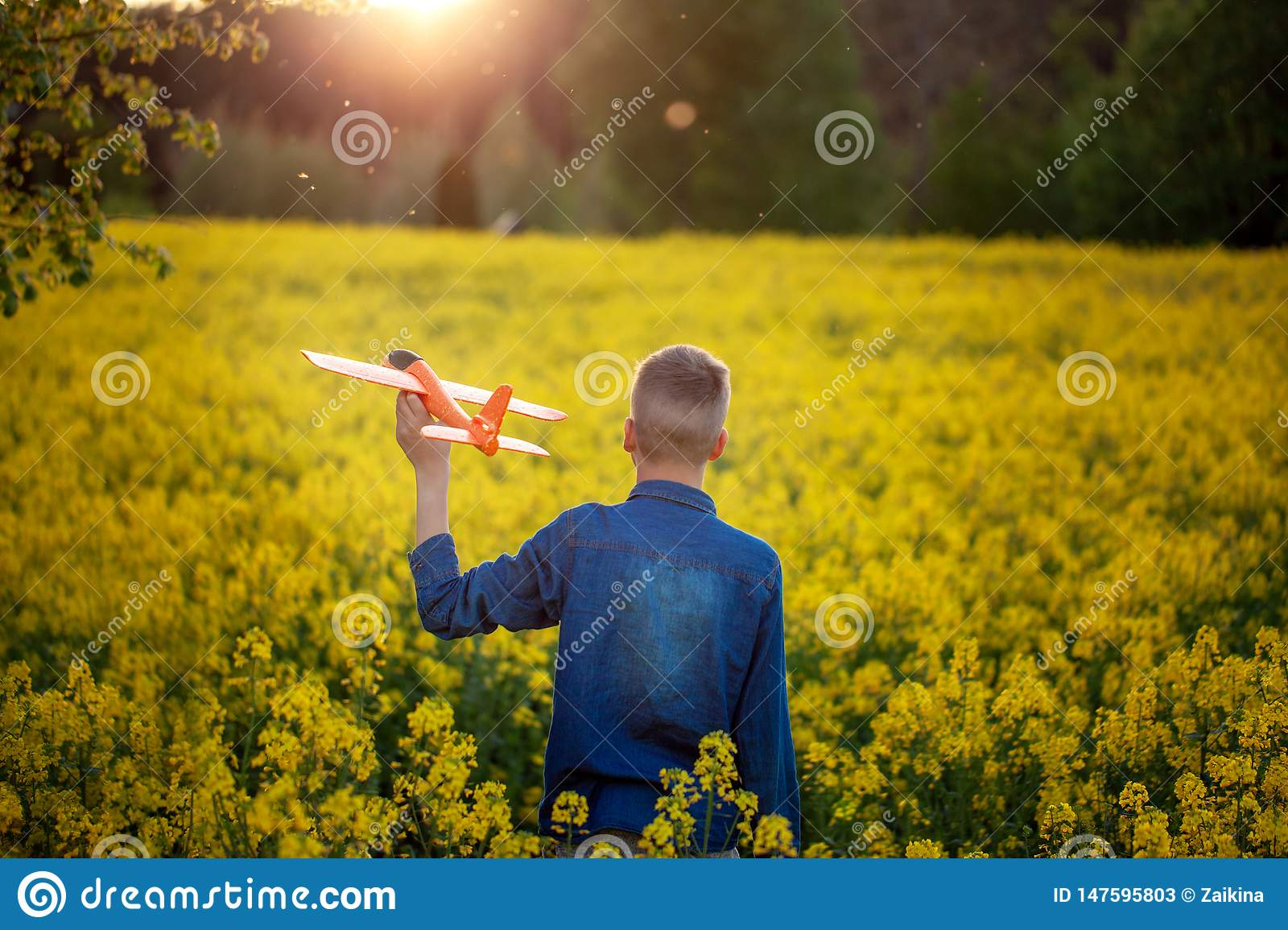 Cute Boy holds toy plane in his hand on sunset in summer day. Back view