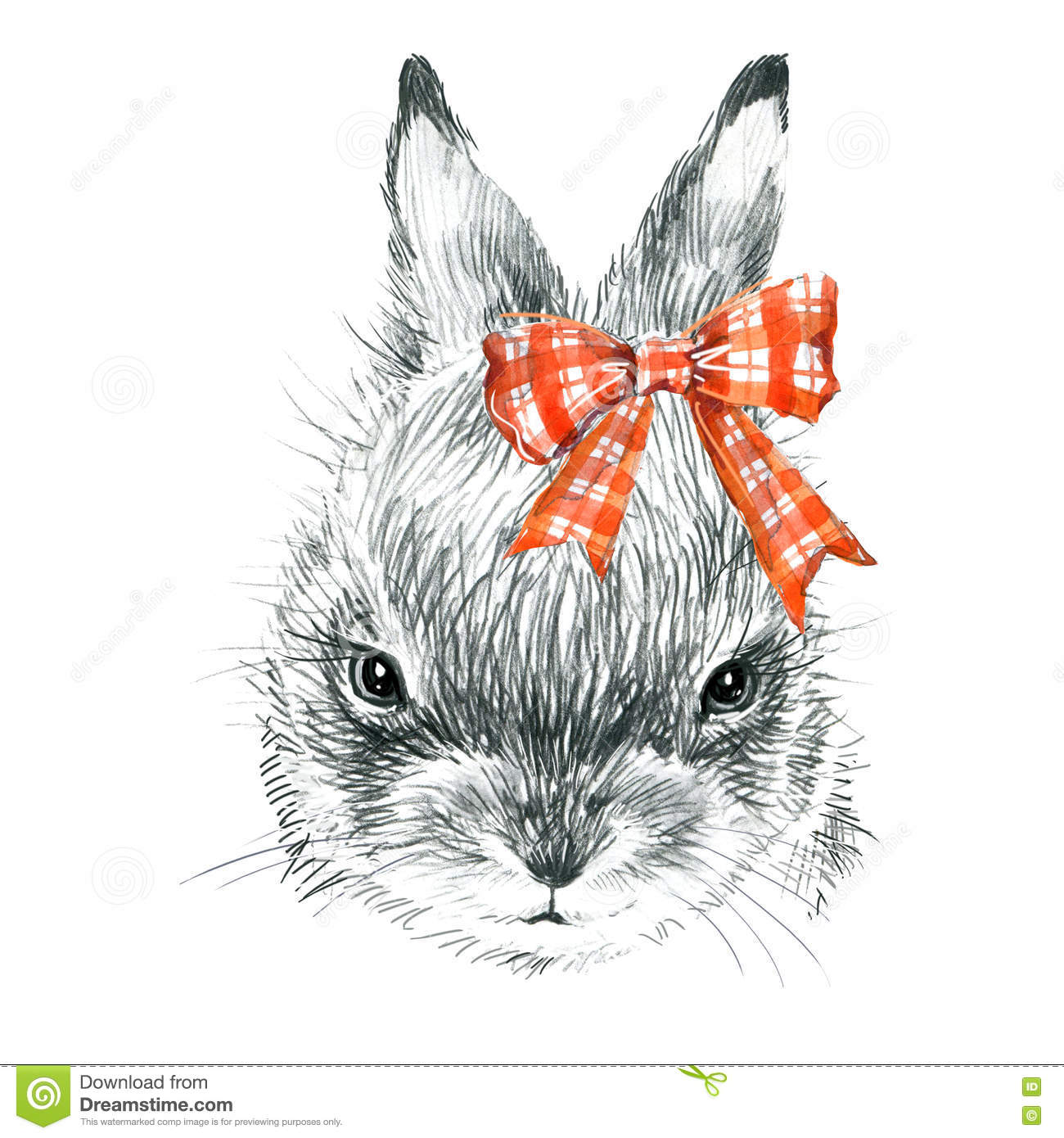 Rabbit pencil sketch illustration t shirt print with cute bunny poster for kid greeting card