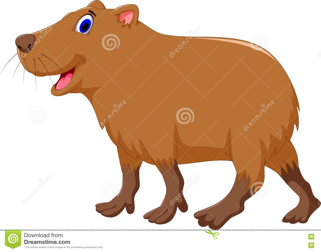 Capybara Stock Illustrations 156 Capybara Stock Illustrations