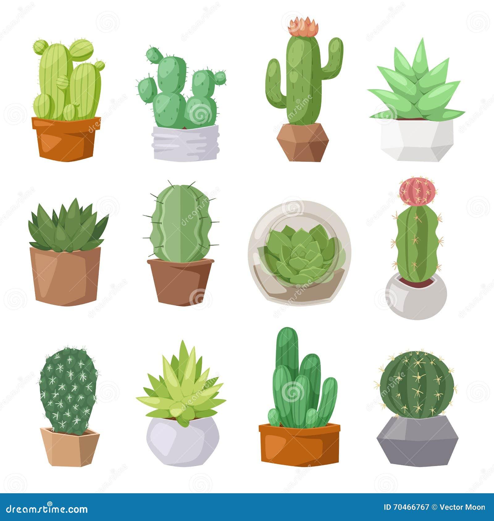 Cute Cartoon Cactus Collection Flat Nature Vector
