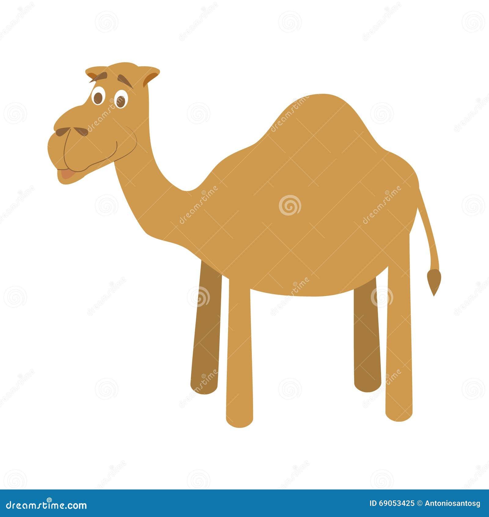 cute camel vector illustration art cartoon vector