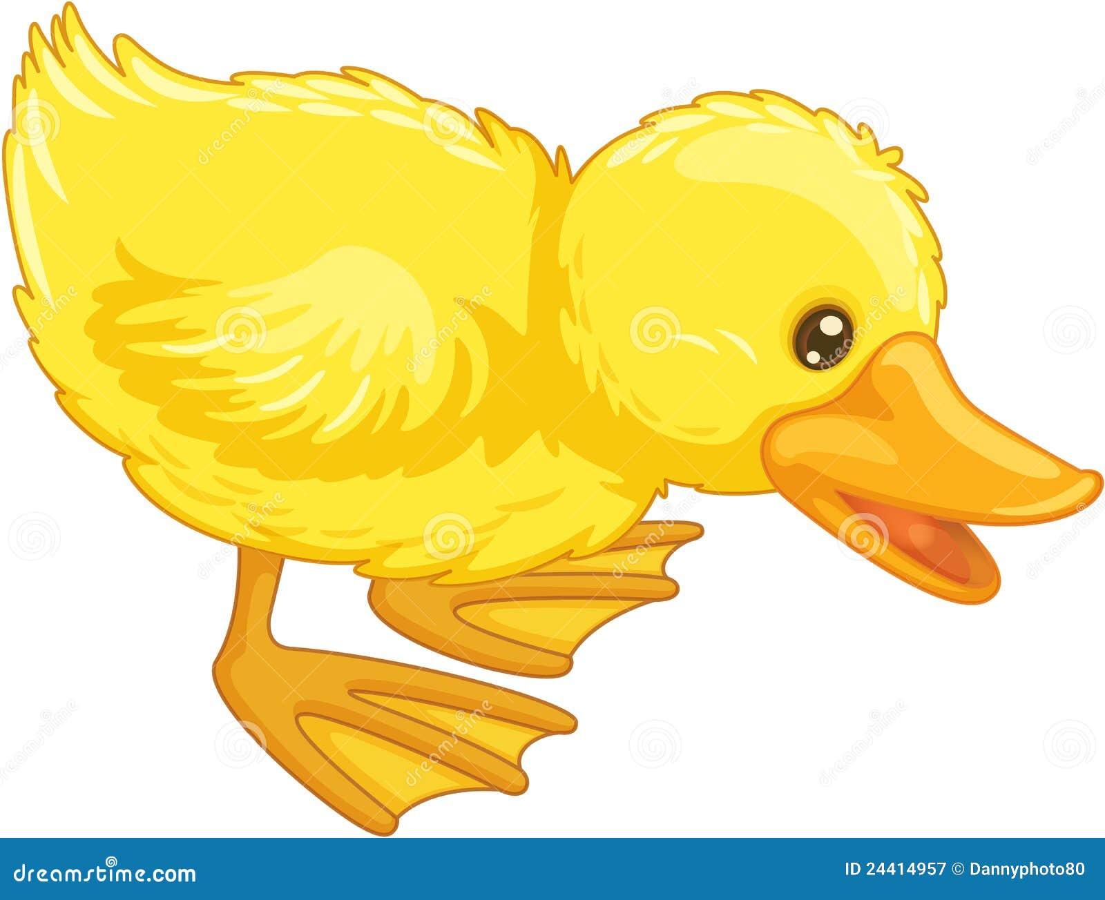 cute cartoon duck royalty free stock photography image 24414957