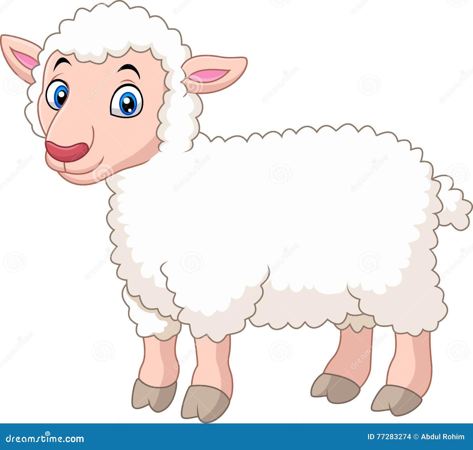 Cute Cartoon Lamb Isolated On White Background Stock ...