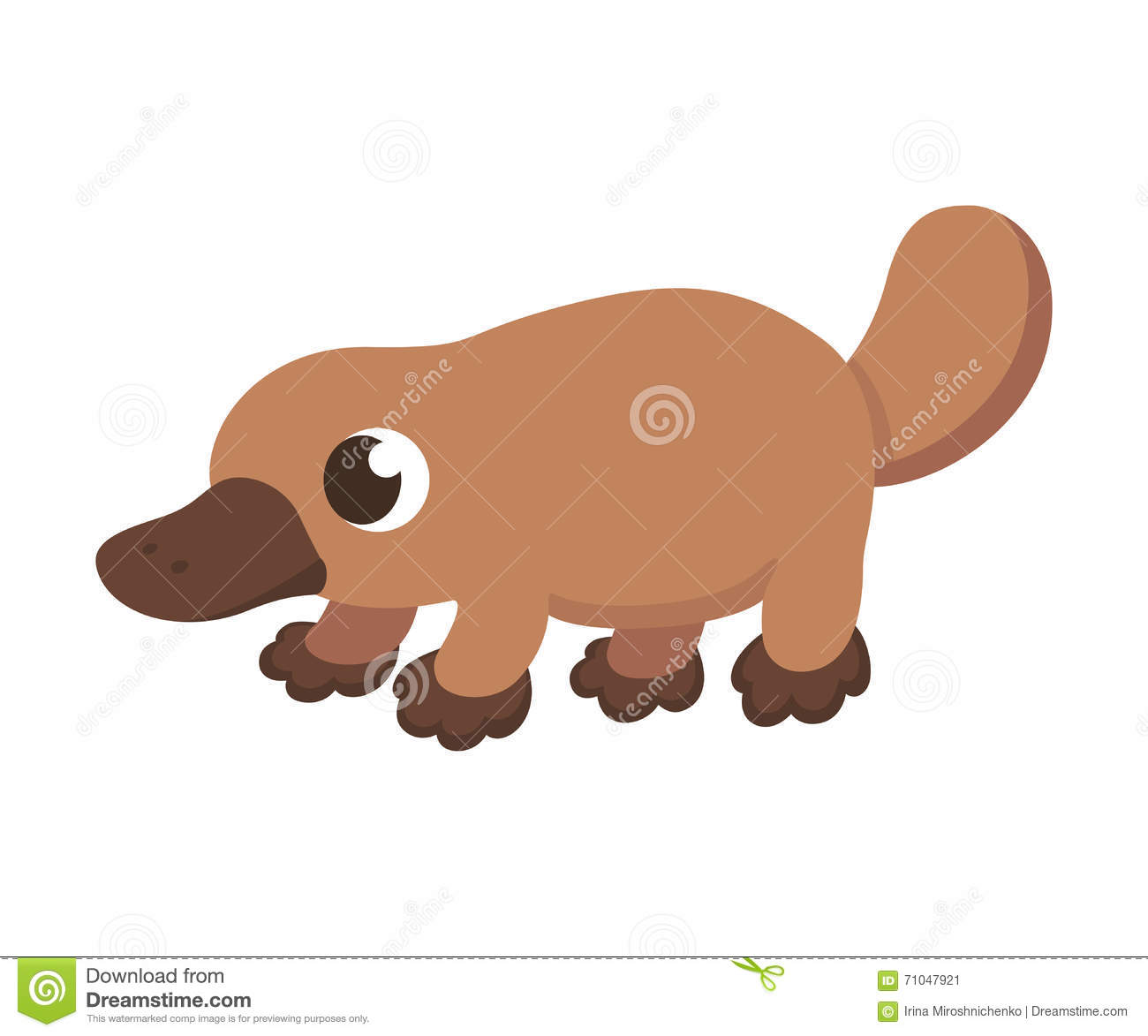 Stock Illustration Cute Cartoon Platypus Illustration Little White Ima...