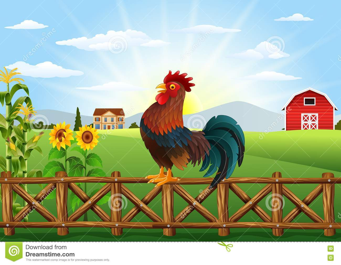 Gallos Coloridos Dibujos Animados: Cute Cartoon Rooster Standing In The Farm Fence Stock