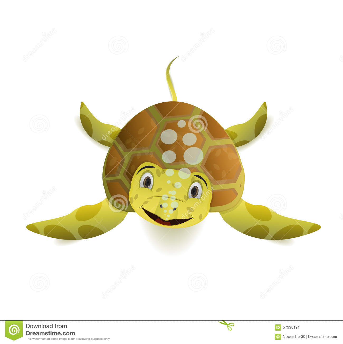 Cute Cartoon Sea Turtle Front View Stock Vector Illustration Of