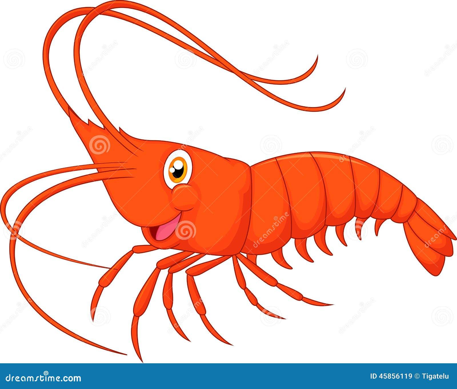 Cute Cartoon Shrimp Stock Vector - Image: 45856119