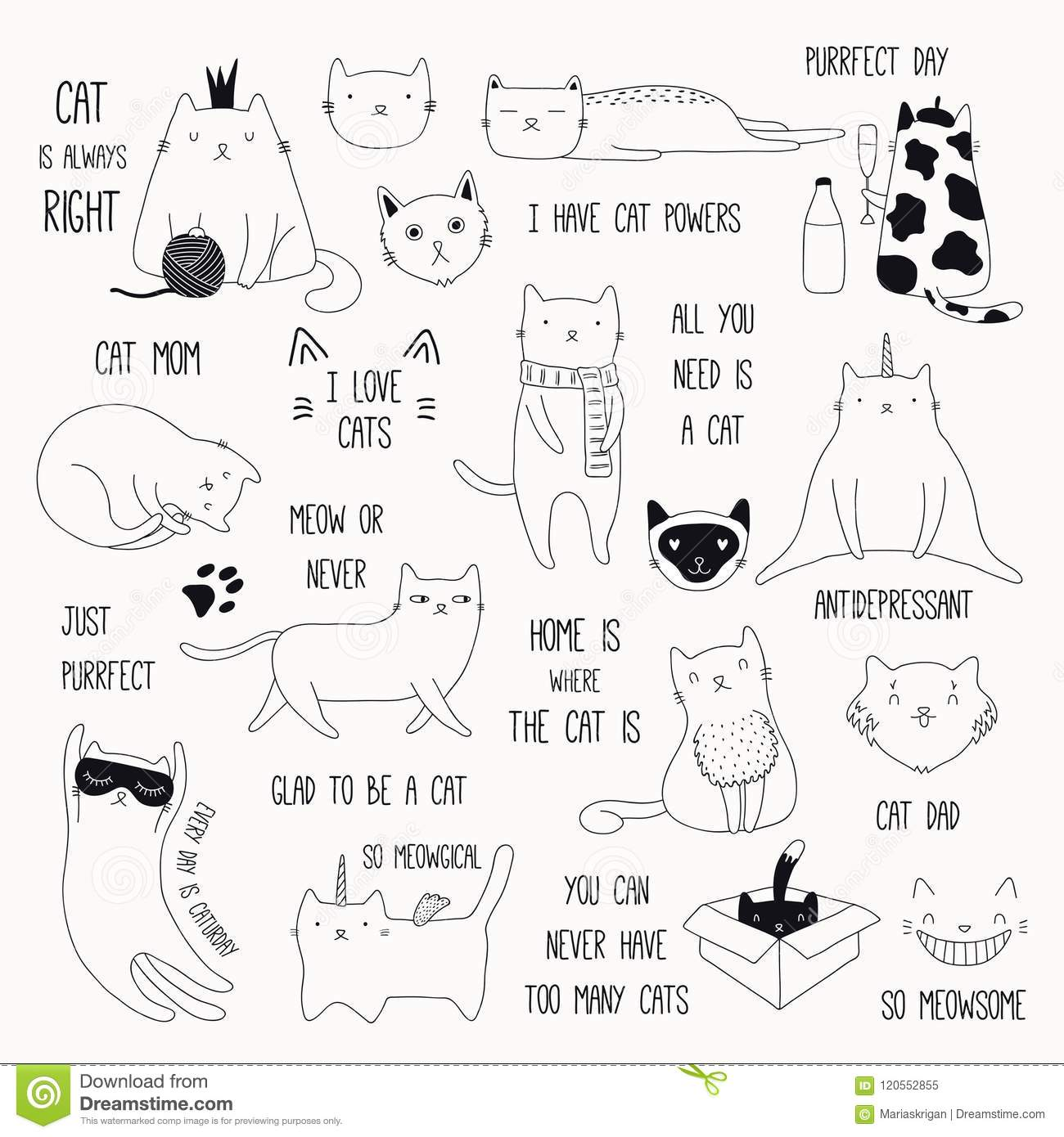 Cute Cat Doodles And Quotes Set Stock Vector Illustration Of