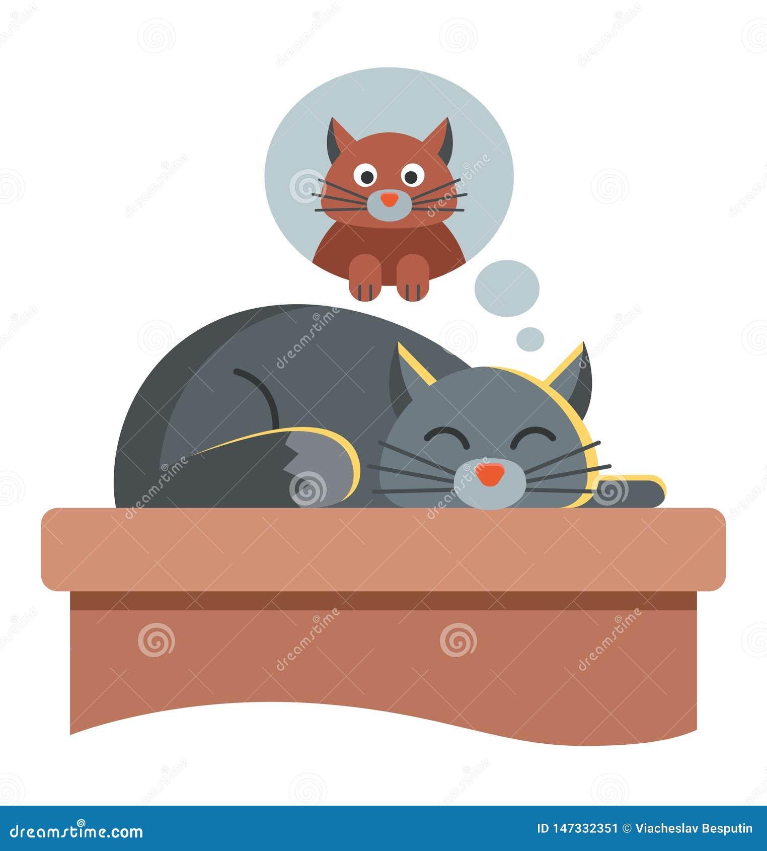 Cute cat dreams of another cat.