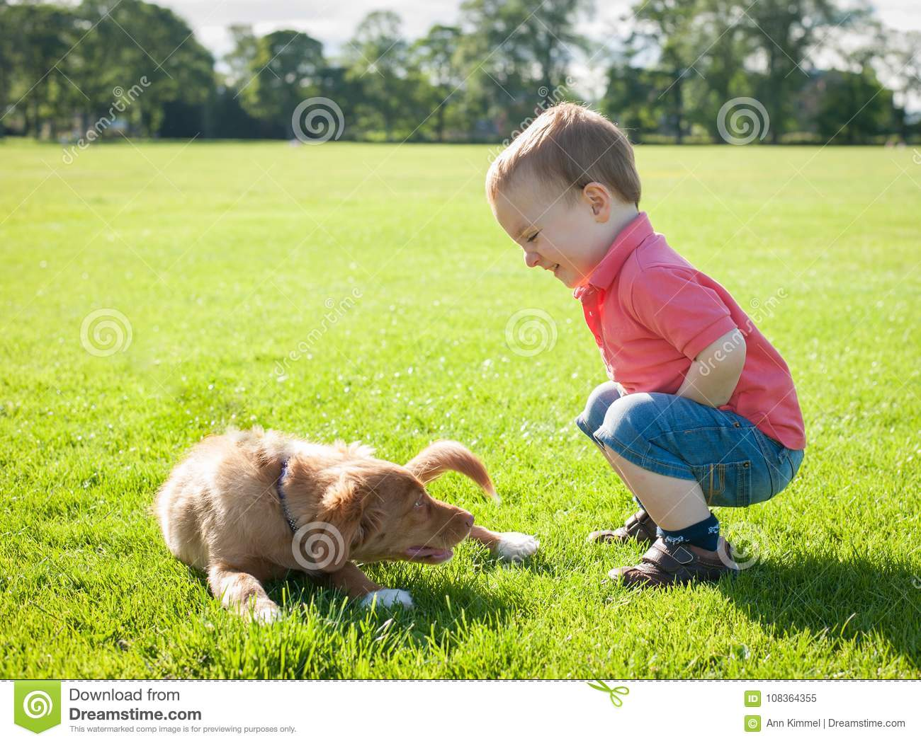 Cute caucasian little todder boy playing with a puppy on a summer meadow