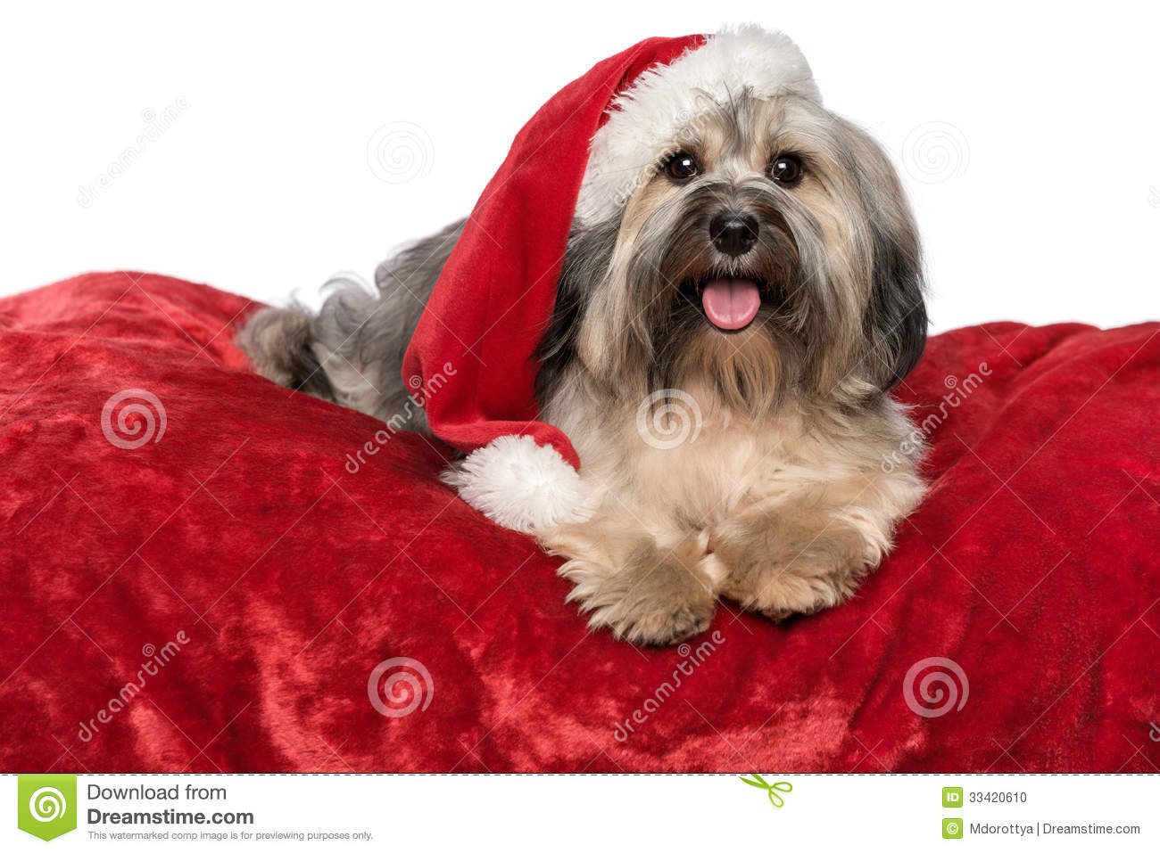 Red Christmas Blanket