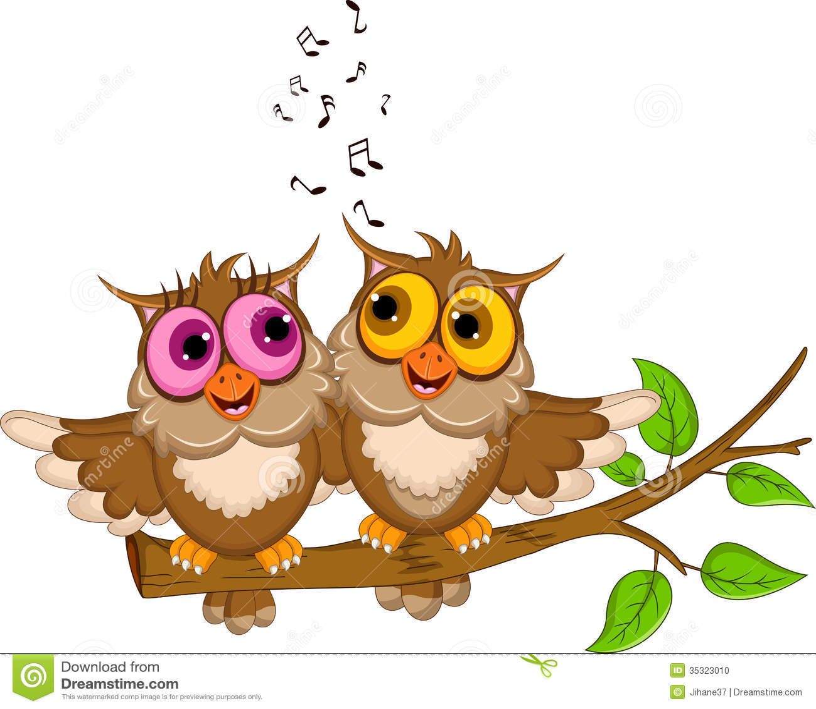 cute couple owl cartoon singing stock photo image 35323010